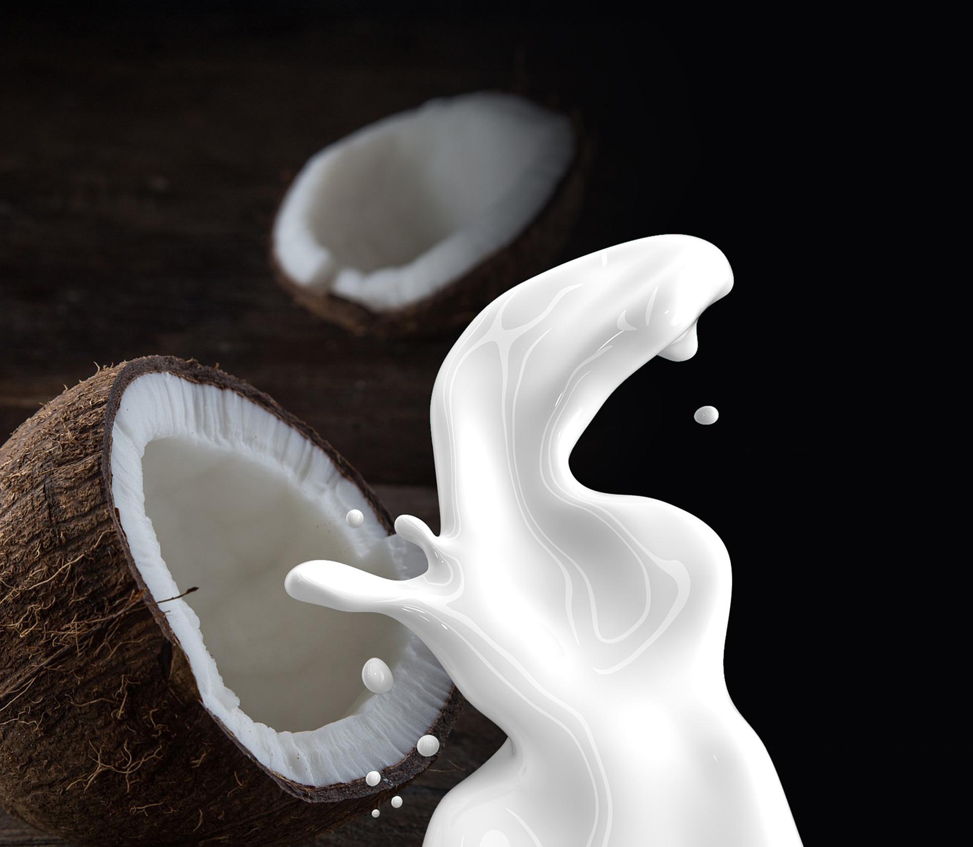 Kokosmilch Shampoo selbstmachen